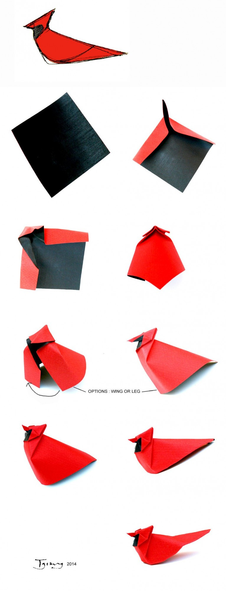 Origami Northern Cardinal-rough diagram by Giang Dinh