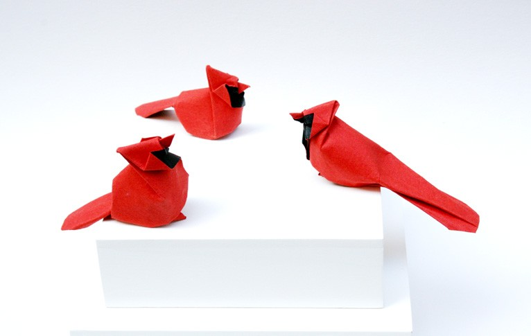 Northern cardinal origami studies by Giang Dinh